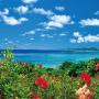 2019 やすらぎの沖縄カレンダー