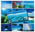 卓上カレンダー 各月イメージ