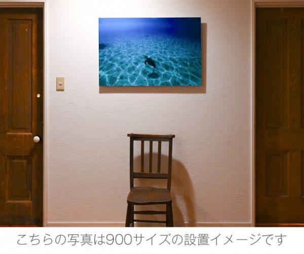 こちらの写真は900サイズの設置イメージです